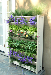 ecoflex-living-wall-vertical-garden-planter-box at sunset feed miami