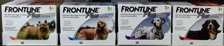 frontline-for-dogs-at-sunset-feed-miami