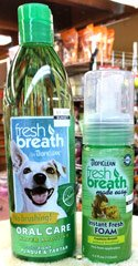 tropiclean-pet-oral-care-at-sunset-feed-miami