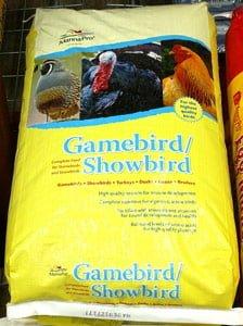 manna-pro-gamebird-snowbird-at-sunset-feed-miami