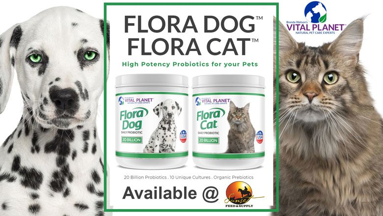 Vital-Planet-Probiotics-and-Supplements-for-Pets-@-Sunset-Feed-Miami