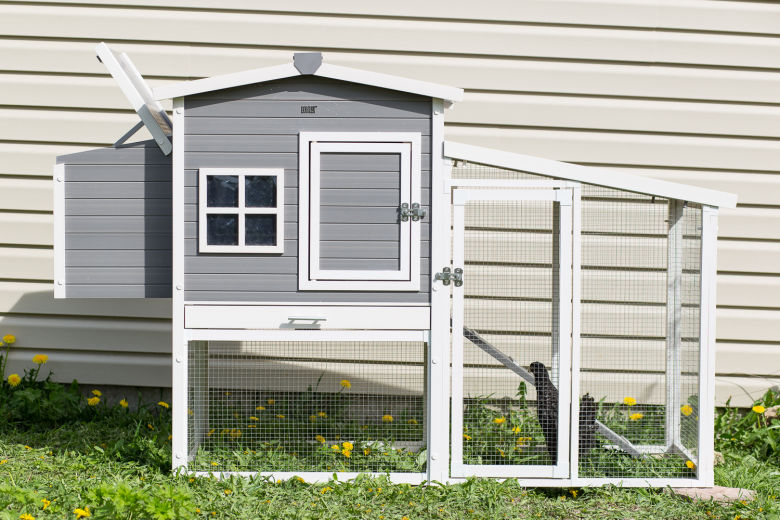Hampton Chicken Coop