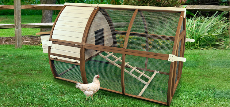 Backyard Charm Open Air Hutch Chicken Coop
