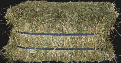 O & A Compressed Hay