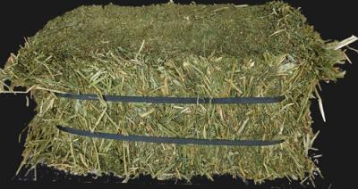 Alfalfa Compressed Hay