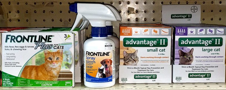 frontline-and-advantage-for-cats-at-sunset-feed-miami