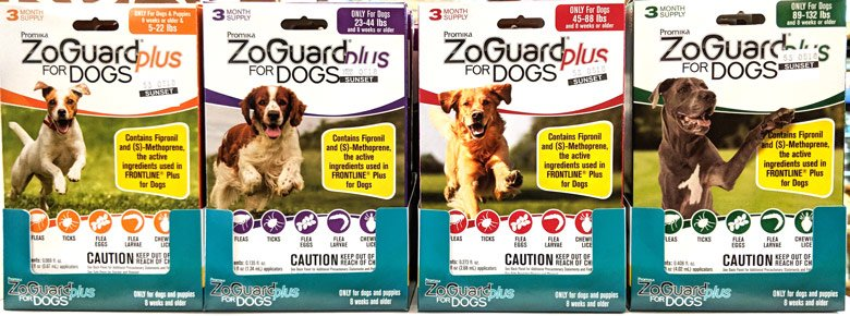 ZoGuard-Plus-for-Dogs-@-Sunset-Feed-Miami