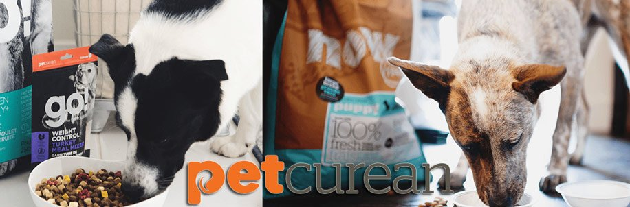 Petcurean-Dog-Food-@-Sunset-Feed-Miami