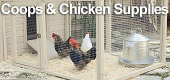Chicken Feed, Coops & Breeding Supplies