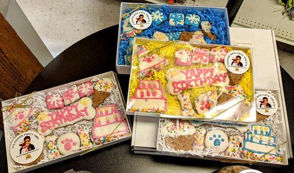 Doggie Bag Cafe Birthday Treat Gift Boxes @ Sunset Feed Miami