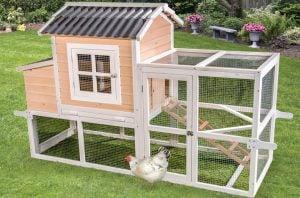 big-dutch-barn-chicken-coop @ sunset feed miami