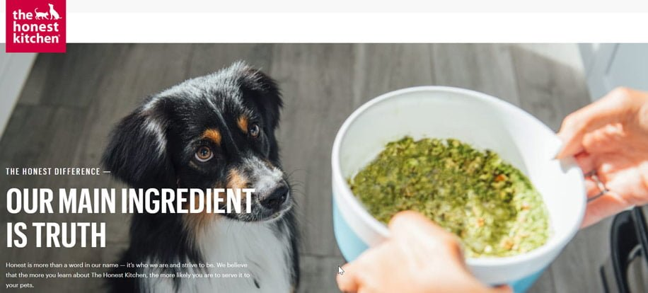 The Honest Kitchen Pet Food @ Sunset Feed Miami