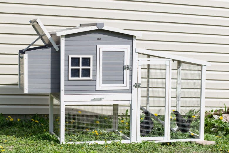 Hampton-Chicken-Coop-ECHK705-2-@-Sunset-Feed-Miami