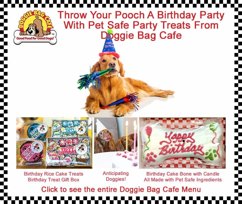 Throw your dog a birthday party with pet safe party treats from Doggie Bag Cafe. Birthday Treats for Dogs @ Sunset Feed Miami