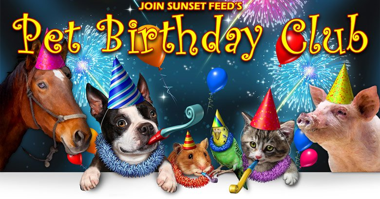 Sunset Feeds Pet Birthday Club