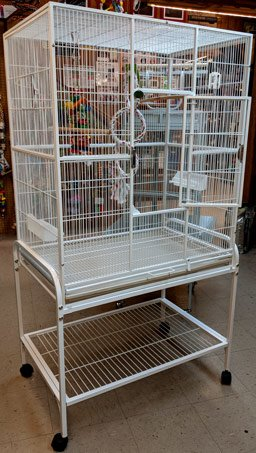 large-white-bird-cage-on-wheels-@-sunset-feed-miami