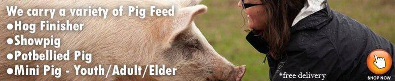 Pig & Hog Feed @ Sunset Feed Miami