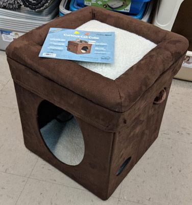 Curios Cat Cube