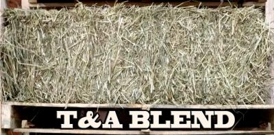 timothy alfalfa blend hay @ sunset feed miami