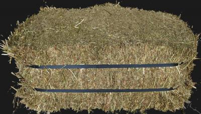 Timothy Compressed Hay