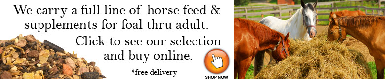 live-animal-horse-feed-ad